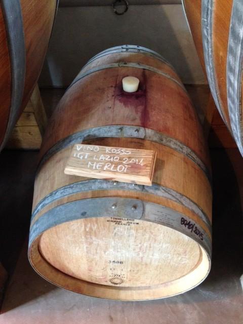 Barrel of Merlot in wine cellar at the Fattoria Fiorano. Photo by Trisha Thomas, April 30, 2016
